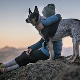 Leyes que te afectan si tienes mascota en el estado de alarma