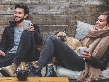 ¿Que ocurre con las mascotas en un divorcio?